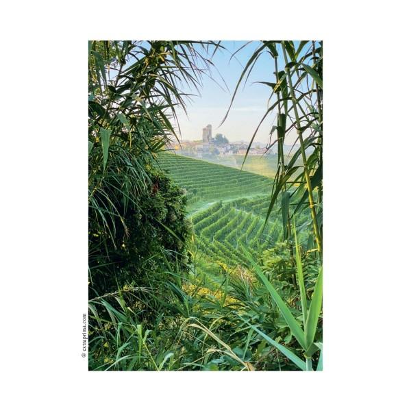 Postkarte Blick auf Serralunga d'Alba