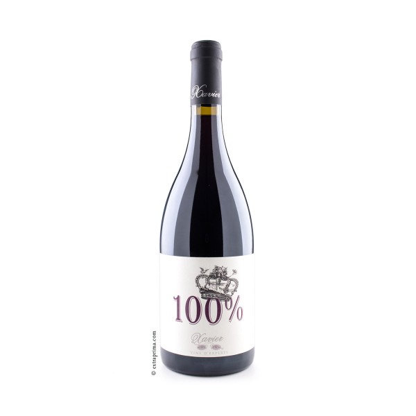 2012 Côtes-du-Rhône rouge '100%' - Xavier Vins