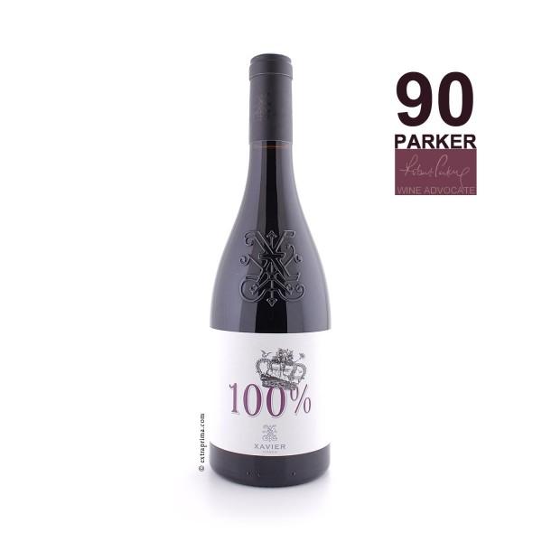 2016 Côtes-du-Rhône rouge '100%' - Xavier Vins